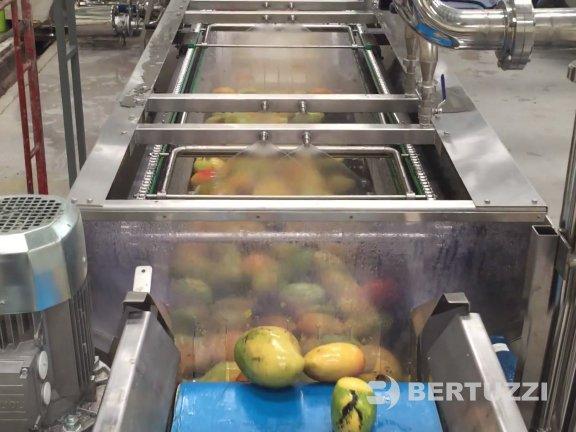 Mango processing Machines & complete Plants for Juice & Puree