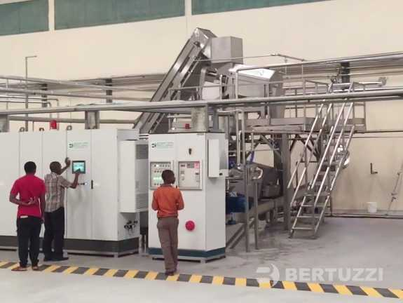 Mango processing Machines & complete Plants for Juice & Puree