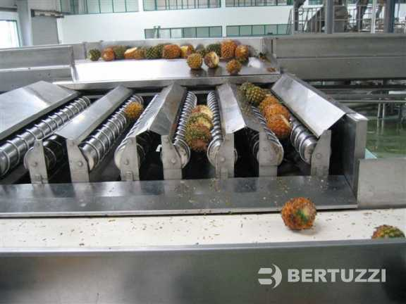 Pineapple Processing Plants Amp Machines For Juice Production