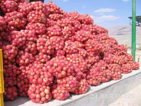 pomegranate deseeder machine